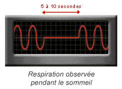 Respiration observée pendant le sommeil