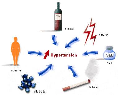 les origines de l'hypertension