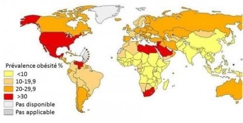 obésité dans le monde hsph 2013-2
