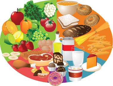 Les types d'aliments