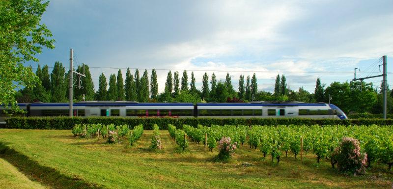 Le train Saveurs et Santé