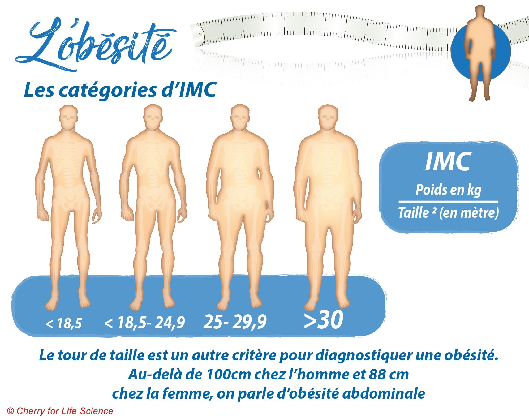 chiffres obésité